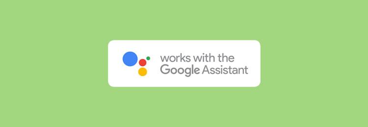 met welke apparaten werkt google assistant
